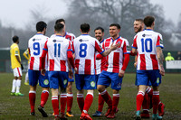 Dorking Wanderers v Harlow Town - Bostik League Premier Division - 20th January 2018